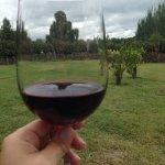 Photo of Postales Boutique Wine Hotels - Valle de Uco