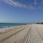 Freshly Cleaned Beach