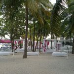 Photo de Grand Oasis Palm