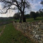 Photo of Castello Monte Vibiano Vecchio