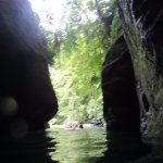 Swimming out of the gorge