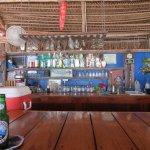 Pickled Parrot Bar