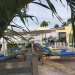 Photo of Bucuti & Tara Beach Resort Aruba