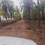 Road to Clandestino