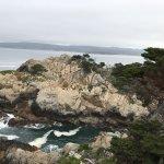 Beautiful Point Lobos