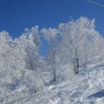 Lodge Nagano照片