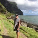 A selection of pics from our trip to pine trees lodge  on Lord Howe Island  which was absolutely
