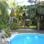 Pool and tropical garden surrounds