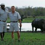 Rhino on foot