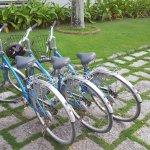 Bike tour booked (half day).
