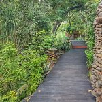 Imagen de Singita Boulders Lodge