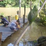 Foto de Orinoco Eco Camp