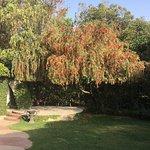 The Roseate New Delhi Foto