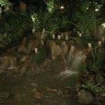 Photo of Kampung Daun