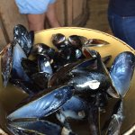 mussels all gone