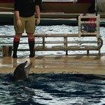 National Aquarium shots