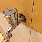 Les salles de bain non nettoyées ...