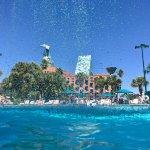 Photo of Walt Disney World Swan and Dolphin