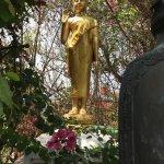 Buddha in garden on my way down