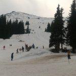 Vitosha Mountain Foto