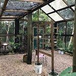 Butterfly preserve/sanctuary