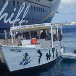 Vom großen auf das kleine Schiff.>Ein individueller erlebnisreicher Schnorchelausflug!