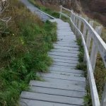 시그너힐에서 내려가는 계단 코스