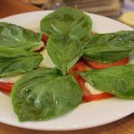 Caprese salad with fresh mozzarella and basil