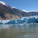 Foto di Adventure Bound Alaska Tracy Arm Glacier Cruise