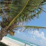 Foto de The Beach Tulum