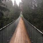 Photo de Pont suspendu et parc de Capilano