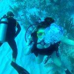 Foto de Doctor Dive Costa Maya