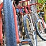 bikes to use
