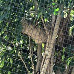 Photo de Santa Ana Zoo at Prentice Park