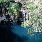 The cenote we visited with glorious, refreshing water and amazing nature surrounding it.