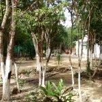 Photo of Cenotes Dos Ojos
