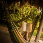 Read a book in our lovely Hammocks