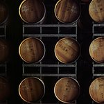 Barrel Hall for wine tasting