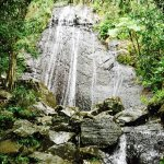 Photo de The El Yunque Rain Forest