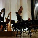 beautiful harps in Filharmonia Krakowie