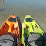 These are the kayaks we rented.