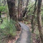 Photo de Jemby-Rinjah Eco Lodge
