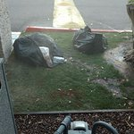 This is what we saw on the way to our first room... open garbage bags