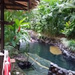 The hot springs by Shangrila Gardens