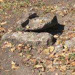 San Gervasio Mayan Archaeological Site Foto