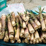The fresh bamboo shoots