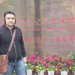Zhangjiajie National Forest Park Foto
