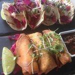 Salmon Tacos and prawn chimichangas