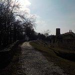 Burgmauer und Burggraben