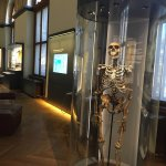Natural History Museum (Naturhistorisches Museum)